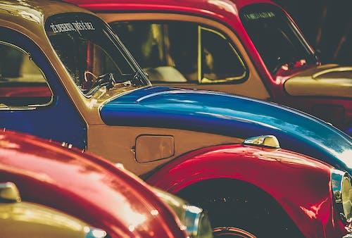 Безкоштовне стокове фото на тему «Volkswagen Beetle, автомобілі, кольоровий, мистецтво»
