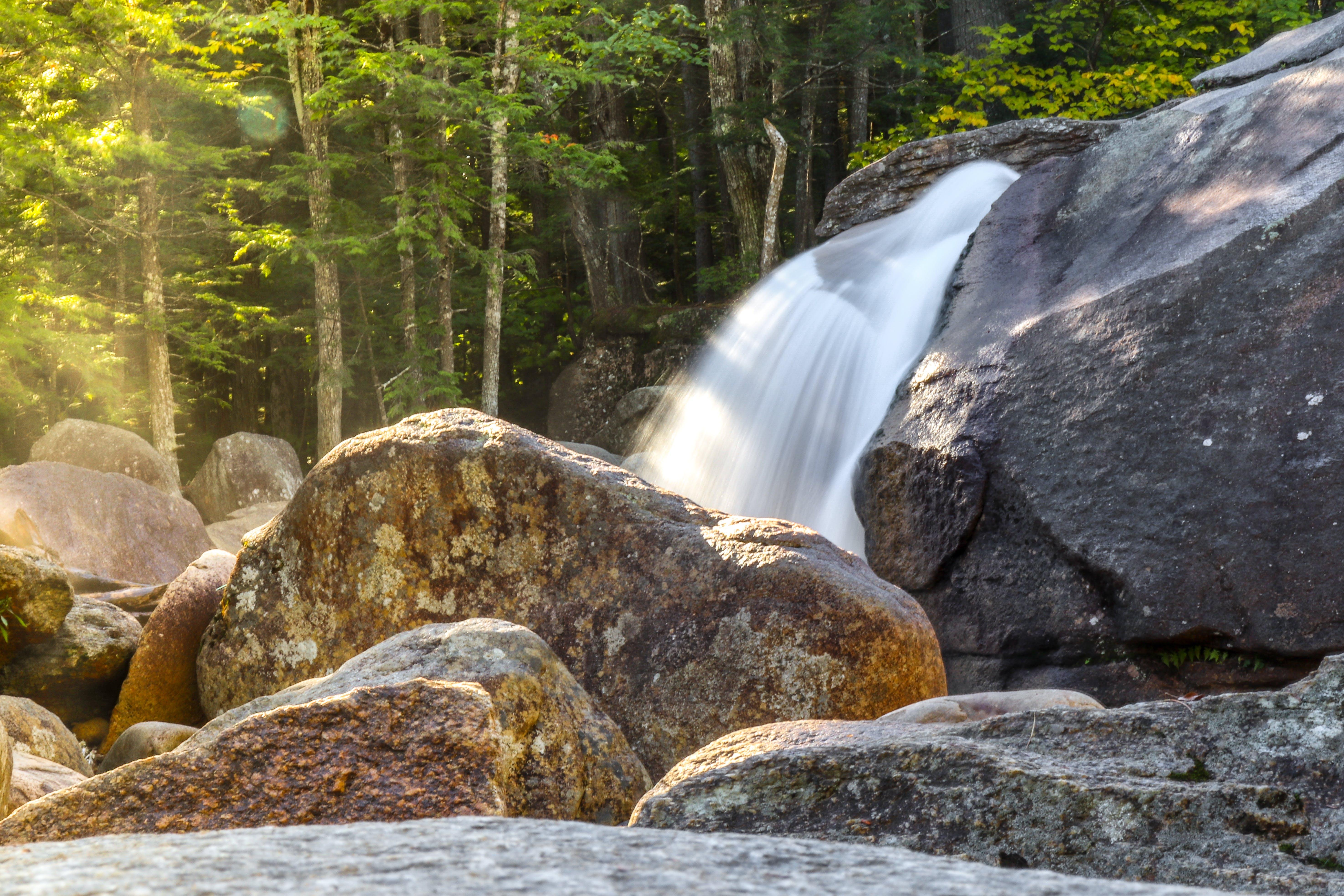 Ingyenes stockfotó erdő, sziklák, víz, vízesés témában