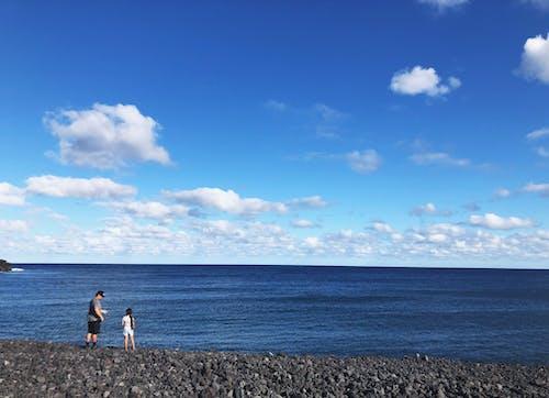 Free stock photo of beach, fishing