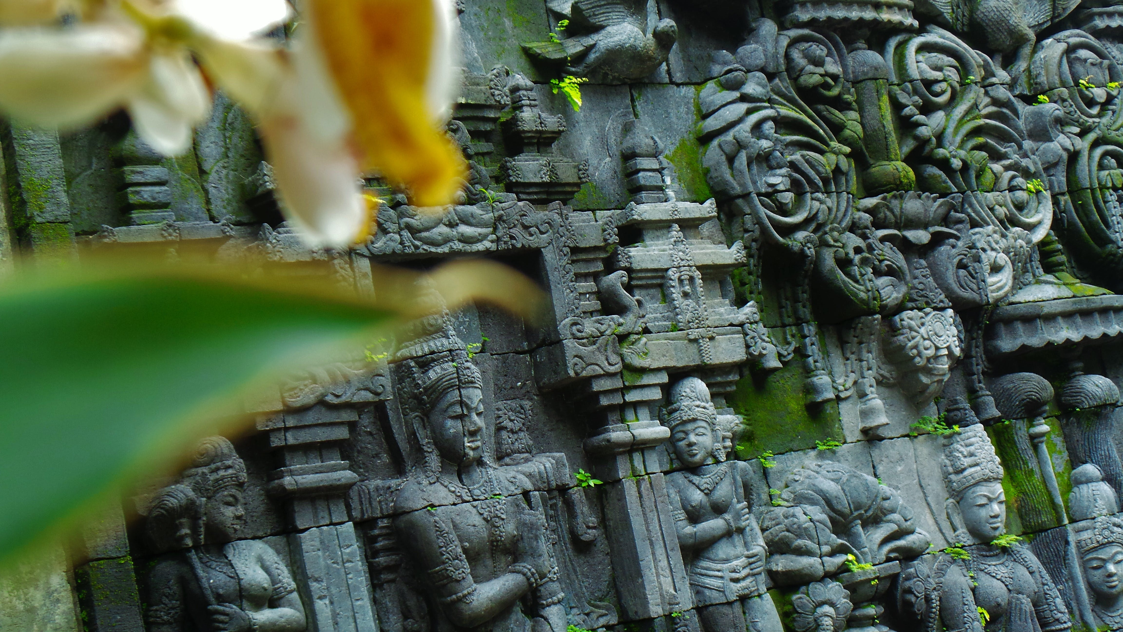 Free stock photo of hinduism, temple