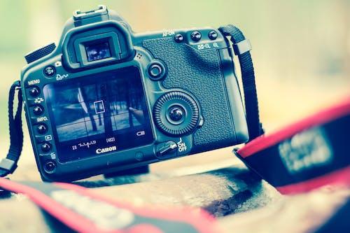 Selective Blur Photo Black Canon Dslr Camera