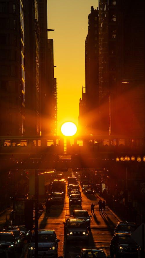 シカゴ, シカゴヘンジ, チットタウン, 日没の無料の写真素材