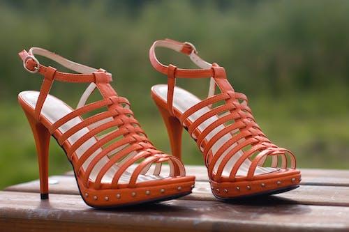 Gratis lagerfoto af appelsin, farver, hæle, høj