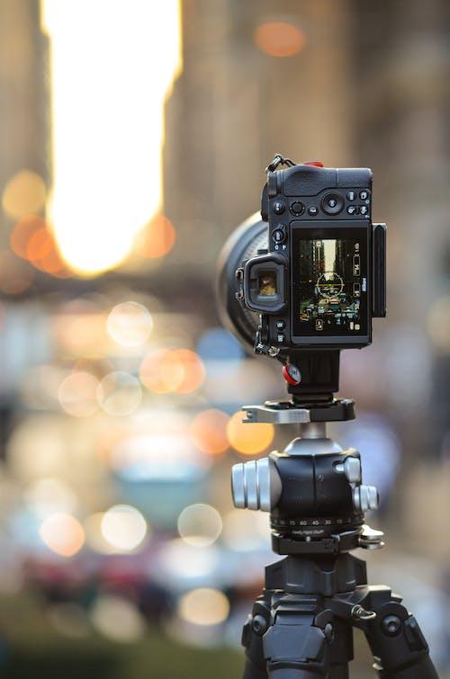シカゴ, ニコン, ニコンカメラ, 屋外の写真の無料の写真素材