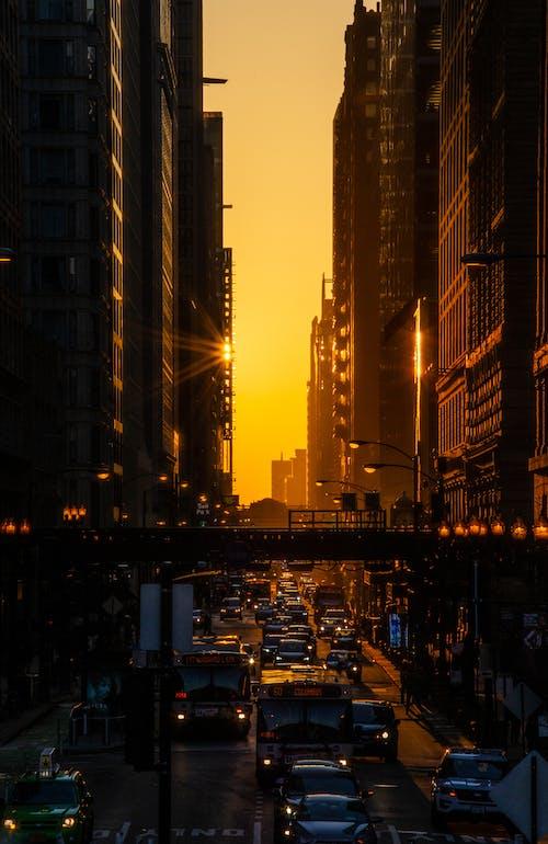 シティ, タワー, ダウンタウン, トラフィックの無料の写真素材
