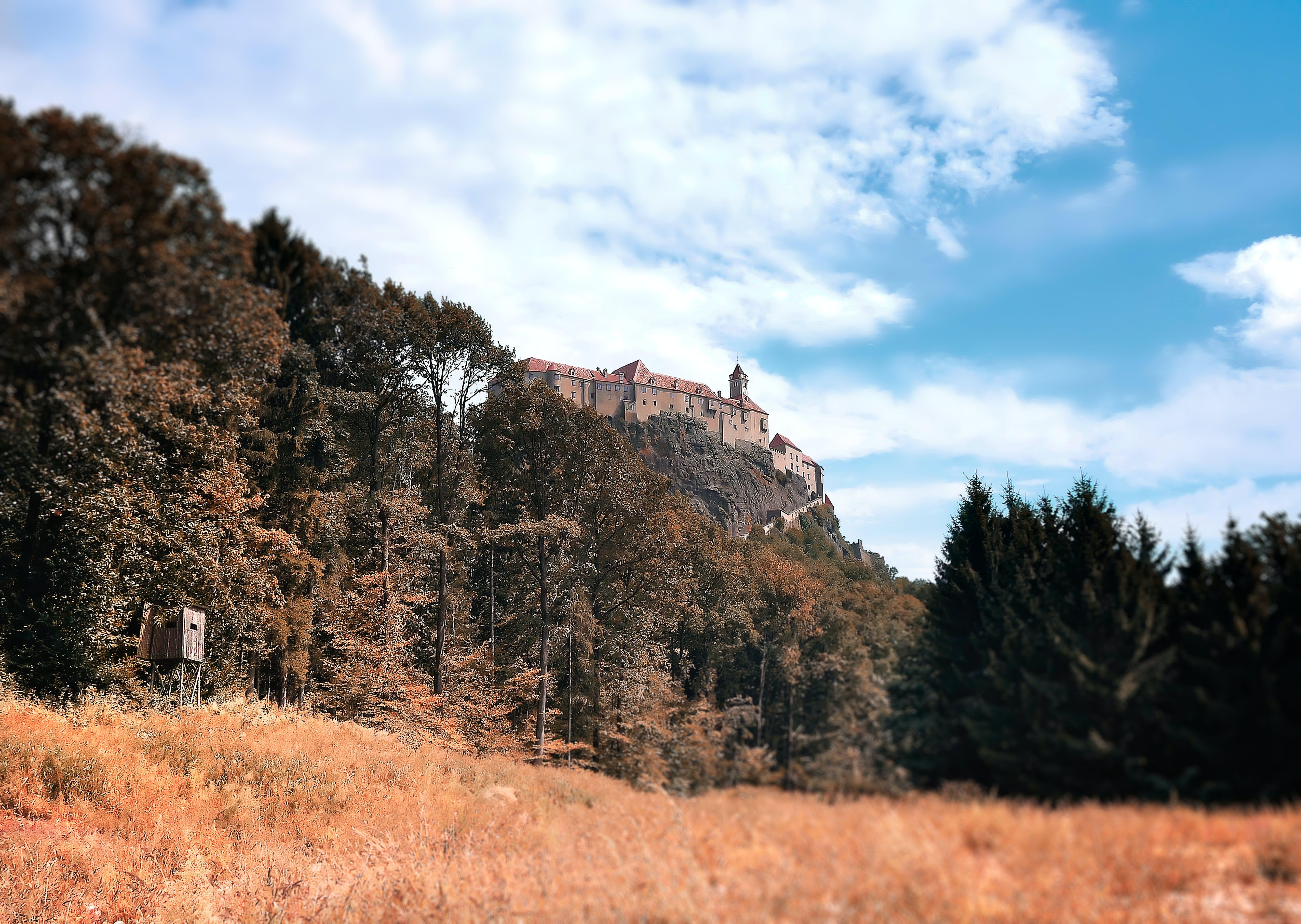中世紀, 城堡, 天性, 奧地利 的 免费素材照片