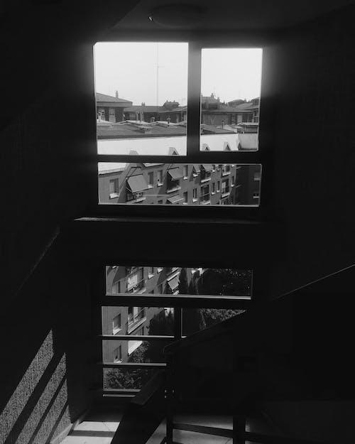 Gratis arkivbilde med by, hvit, hvit bakgrunn, leve