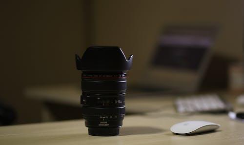 Immagine gratuita di concentrarsi, focalizzare, focus, legno