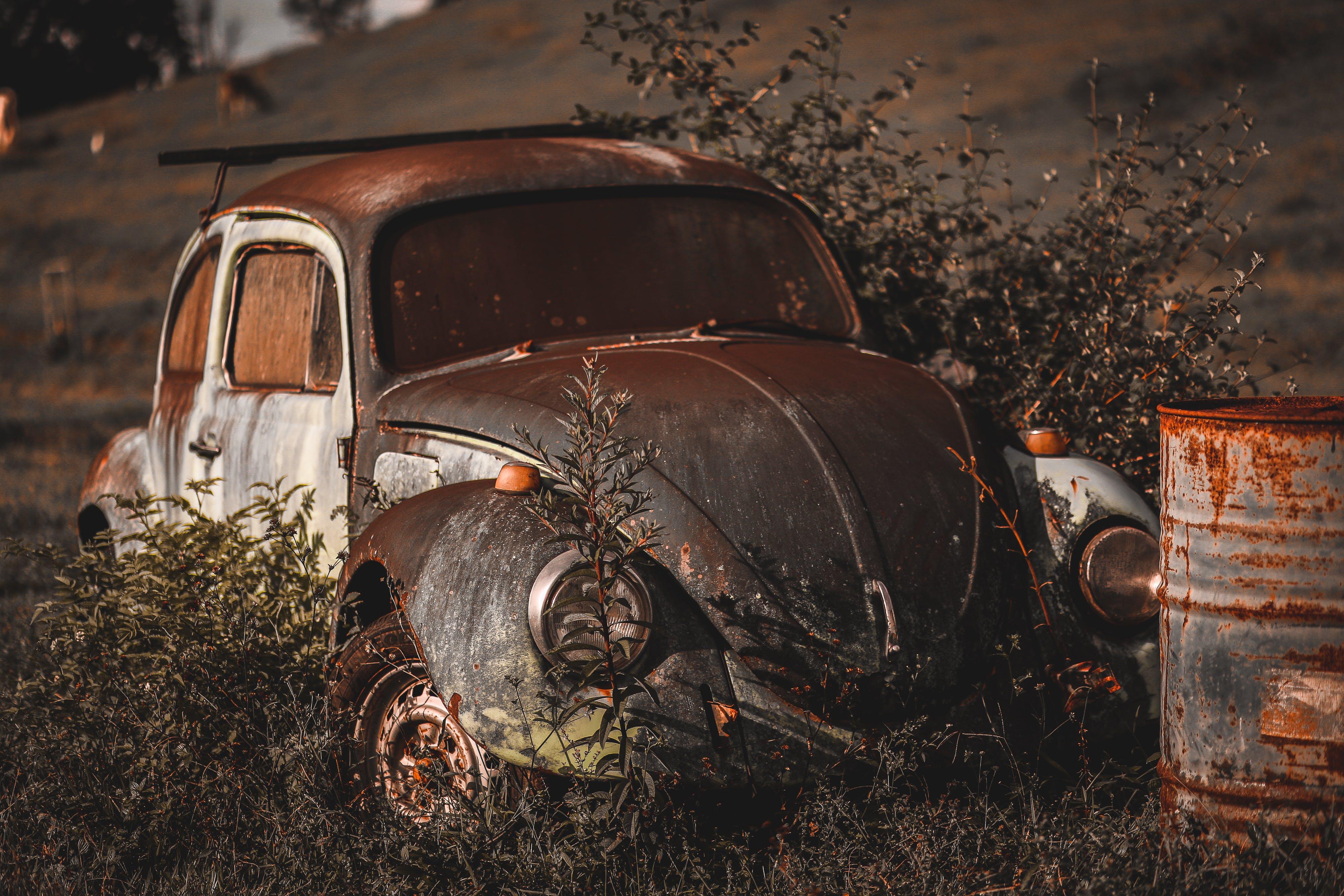 Imagine de stoc gratuită din abandonat, automobil, iarbă, mașină vintage