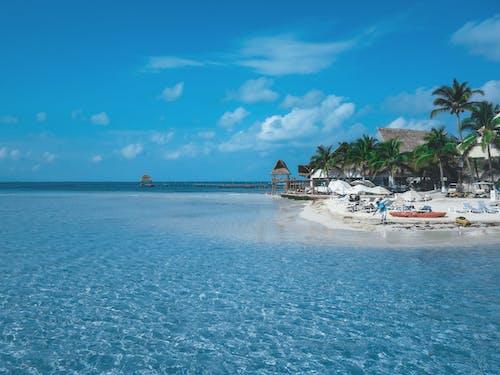 Free stock photo of beach, blue, cancun