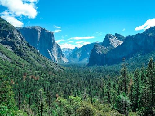 Free stock photo of national park, yosemite, yosemite valley