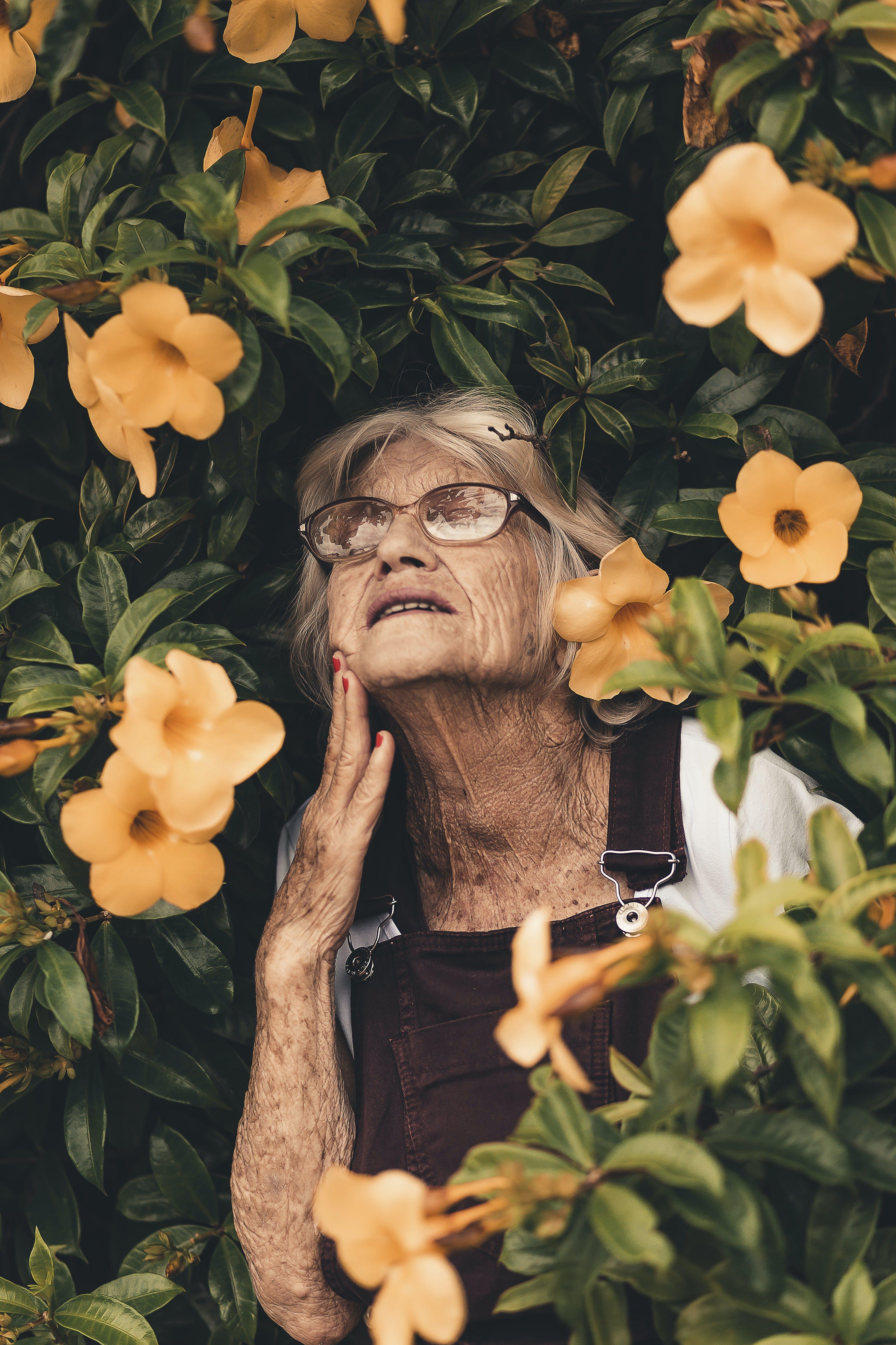 Ingyenes stockfotó idős, idősebb, idősek, nagymama témában