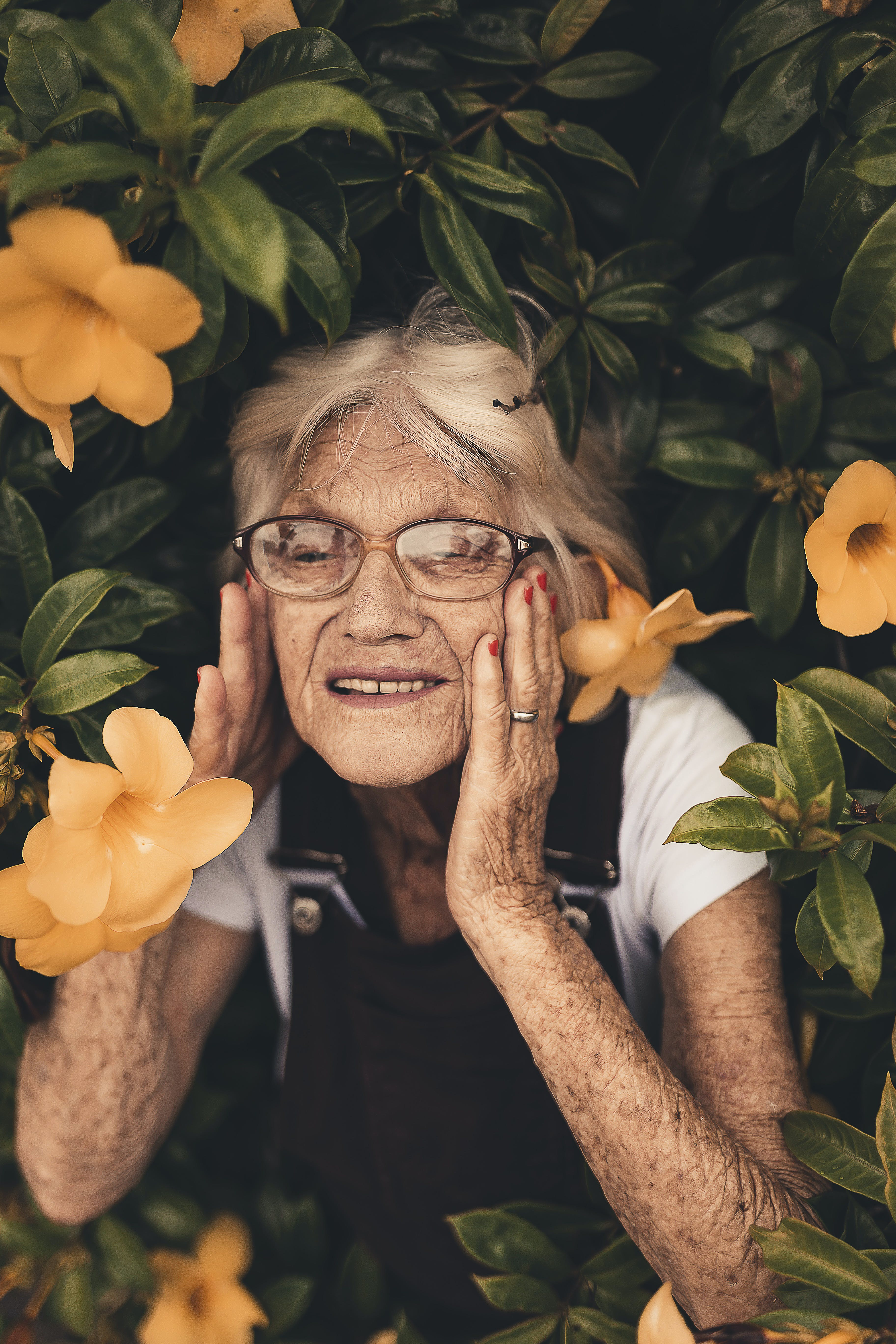 Kostnadsfri bild av blomma, blommor, flora, kvinna