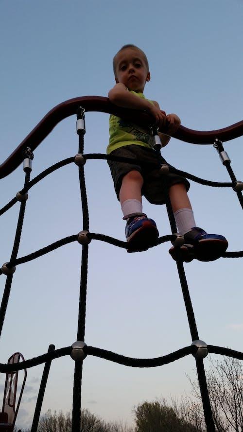 Free stock photo of climbing, little boy, little boy up high, looking down