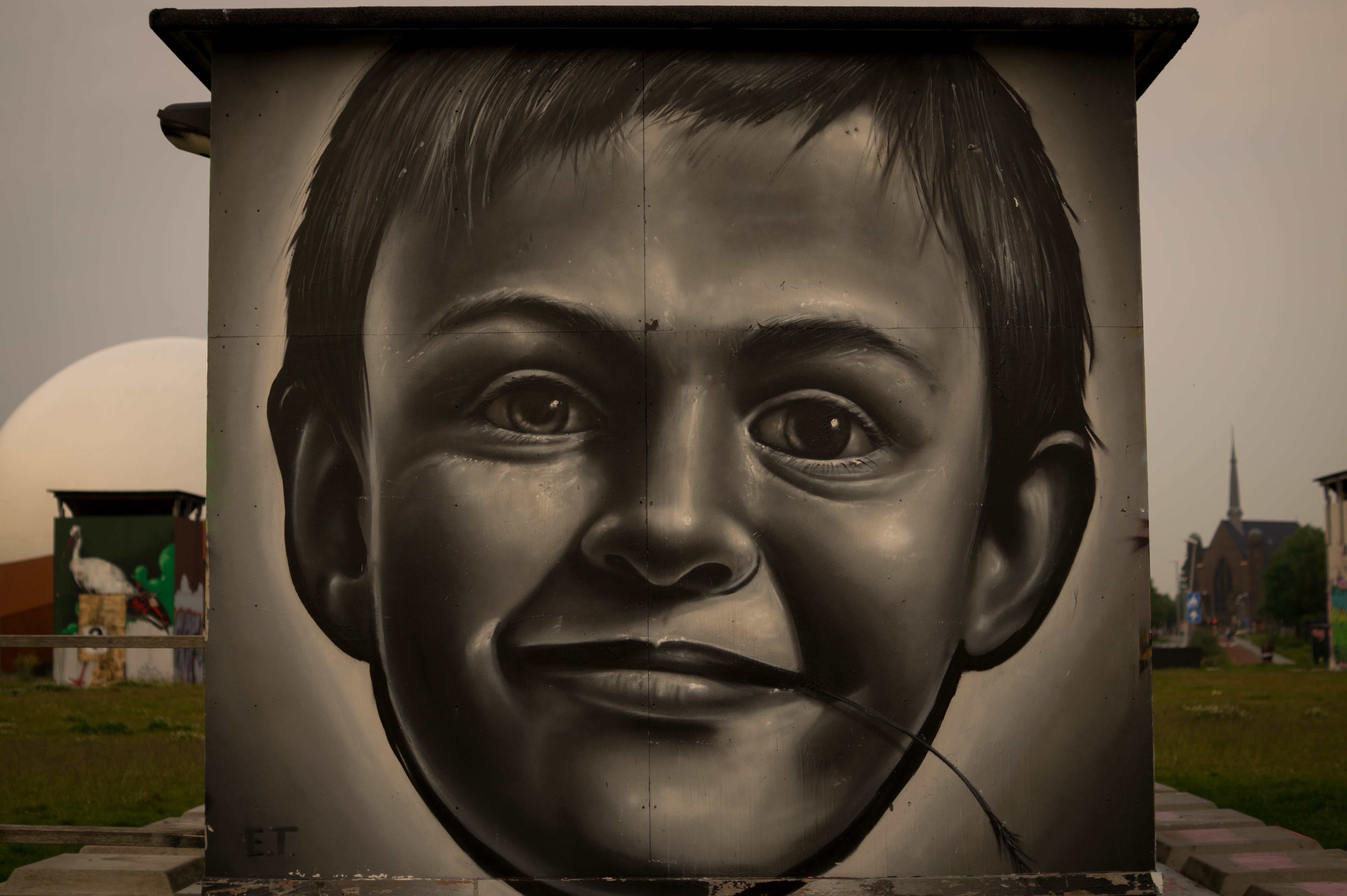 Boy's Portrait on Wall