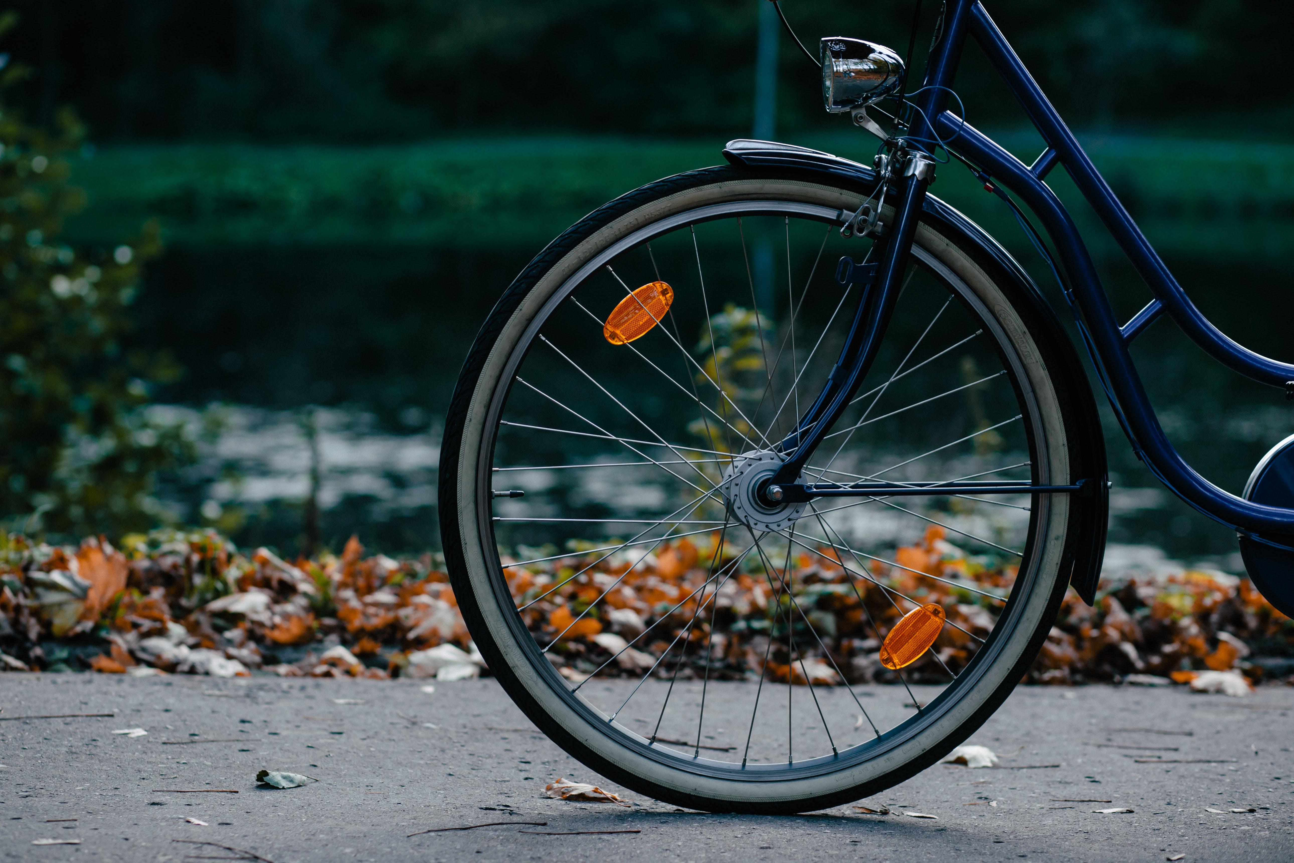 Black and Blue Cruiser Bike