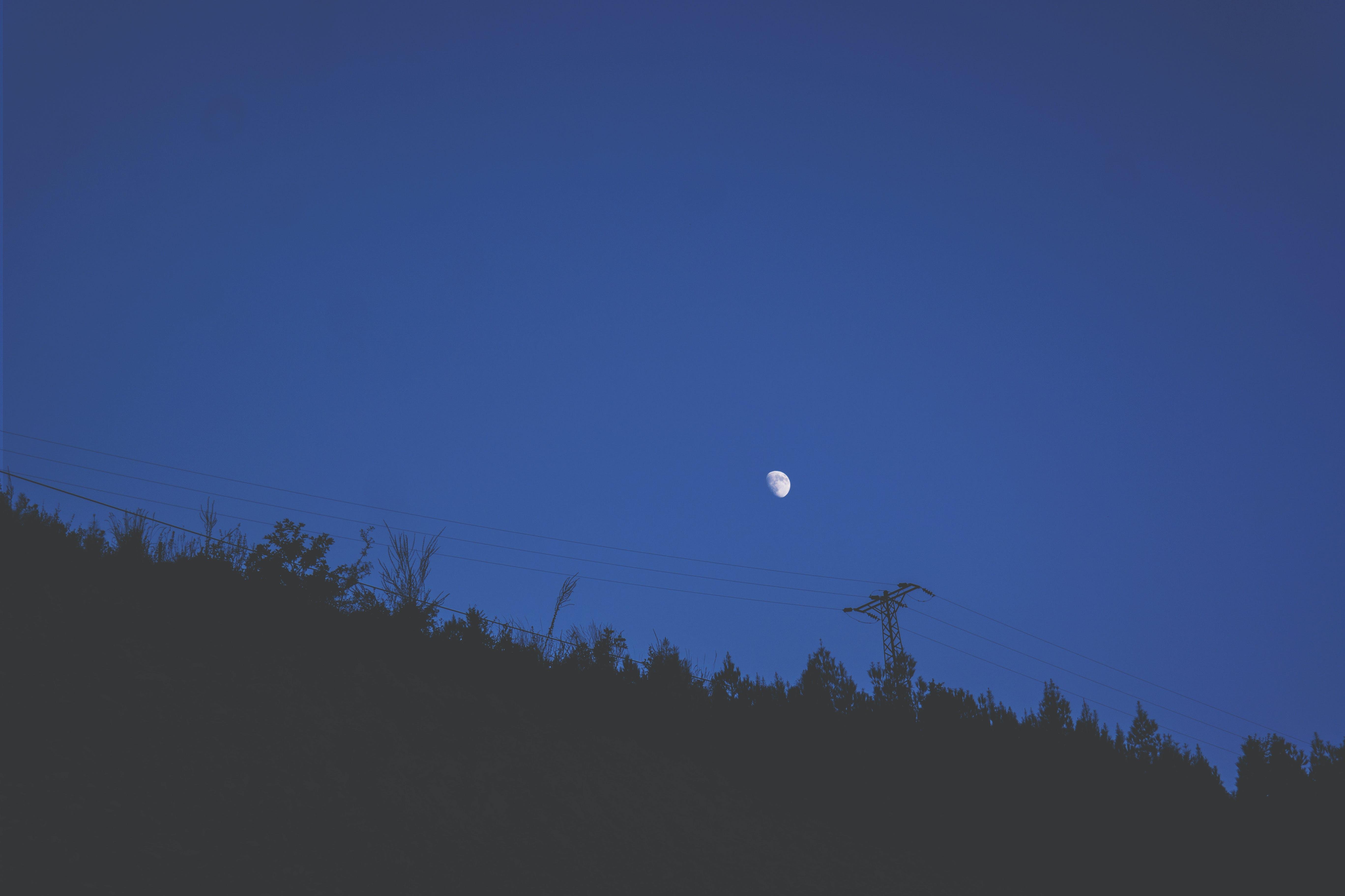Darmowe zdjęcie z galerii z błękitne niebo, ciemny, czarny, drzewa
