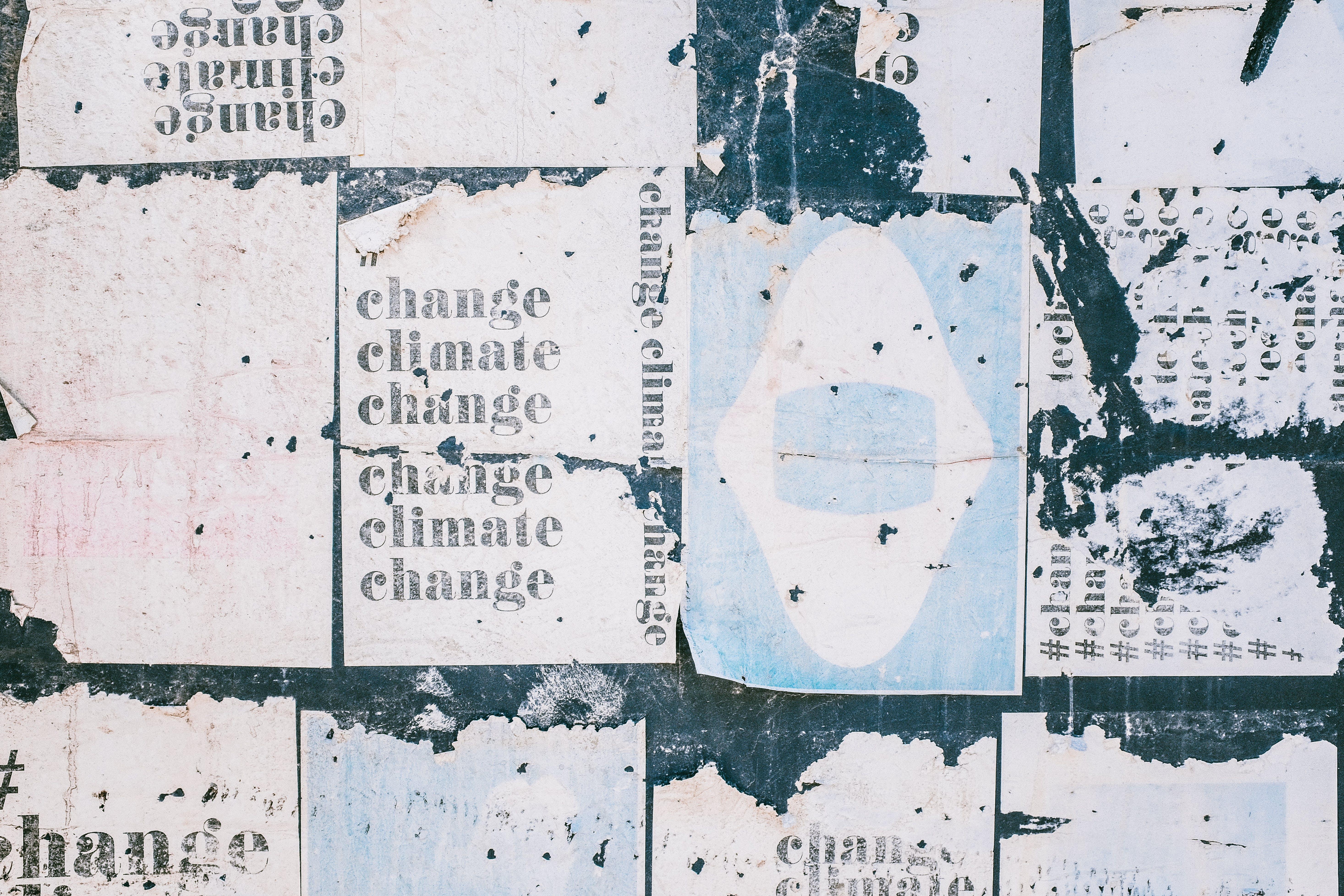 Základová fotografie zdarma na téma design, drobné, graffiti, povrch