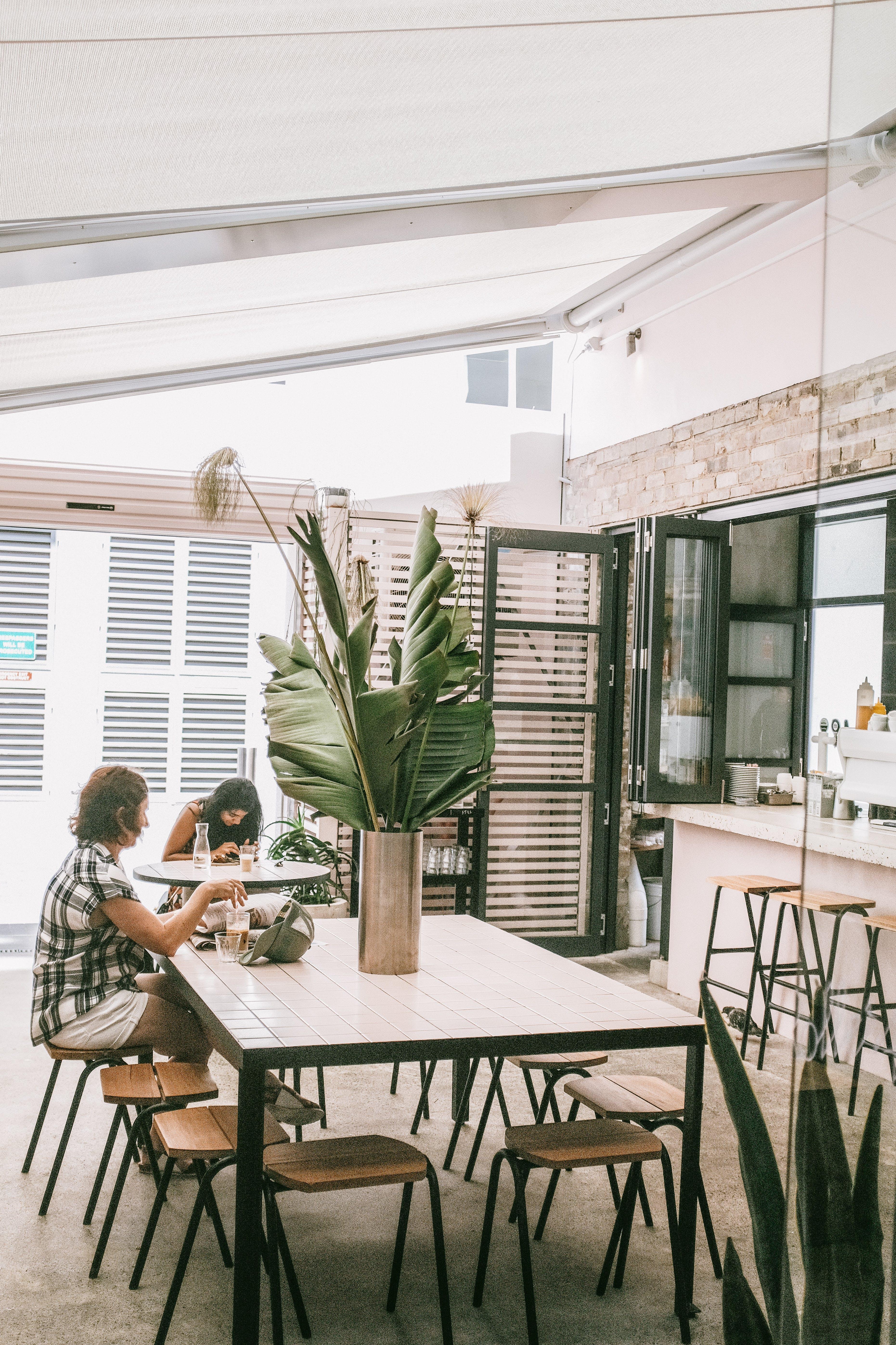 Základová fotografie zdarma na téma design, design interiéru, interiér, jídelna