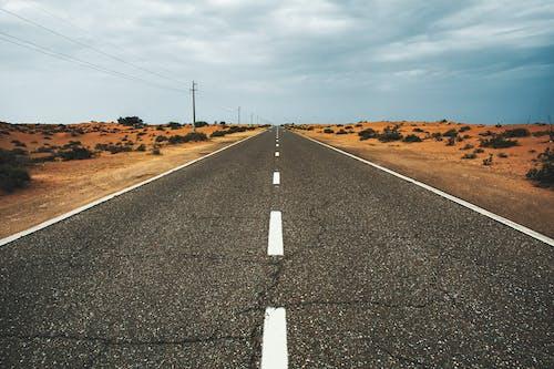 Immagine gratuita di asfalto, autostrada, campagna, cespugli
