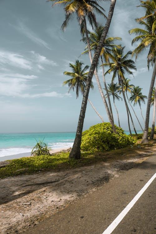 Free stock photo of beach, beach road, blue water, drive