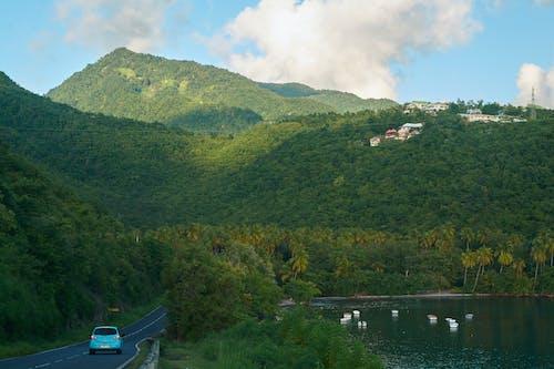 guadeloupe adaları karayipler doğa manzarası içeren Ücretsiz stok fotoğraf
