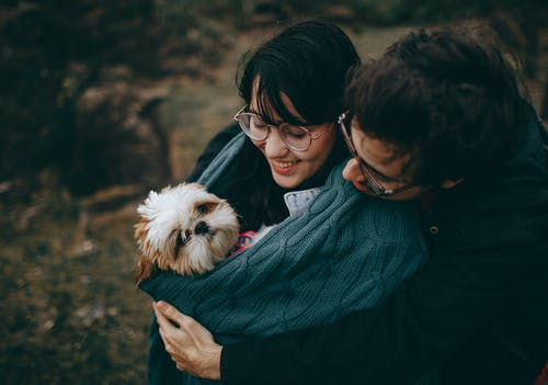 Couple Hugging Adult Tan and White Shih Tzu on Focus Photography