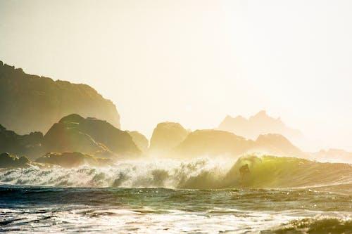 Free stock photo of ocean, sun, sunset, surfer