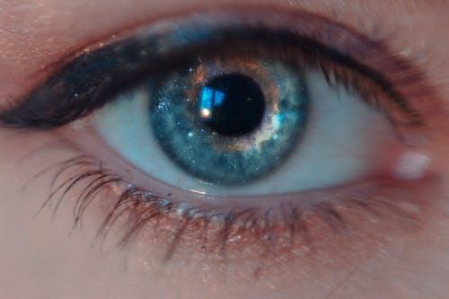 Free stock photo of beautiful eyes, blue eyes, eye