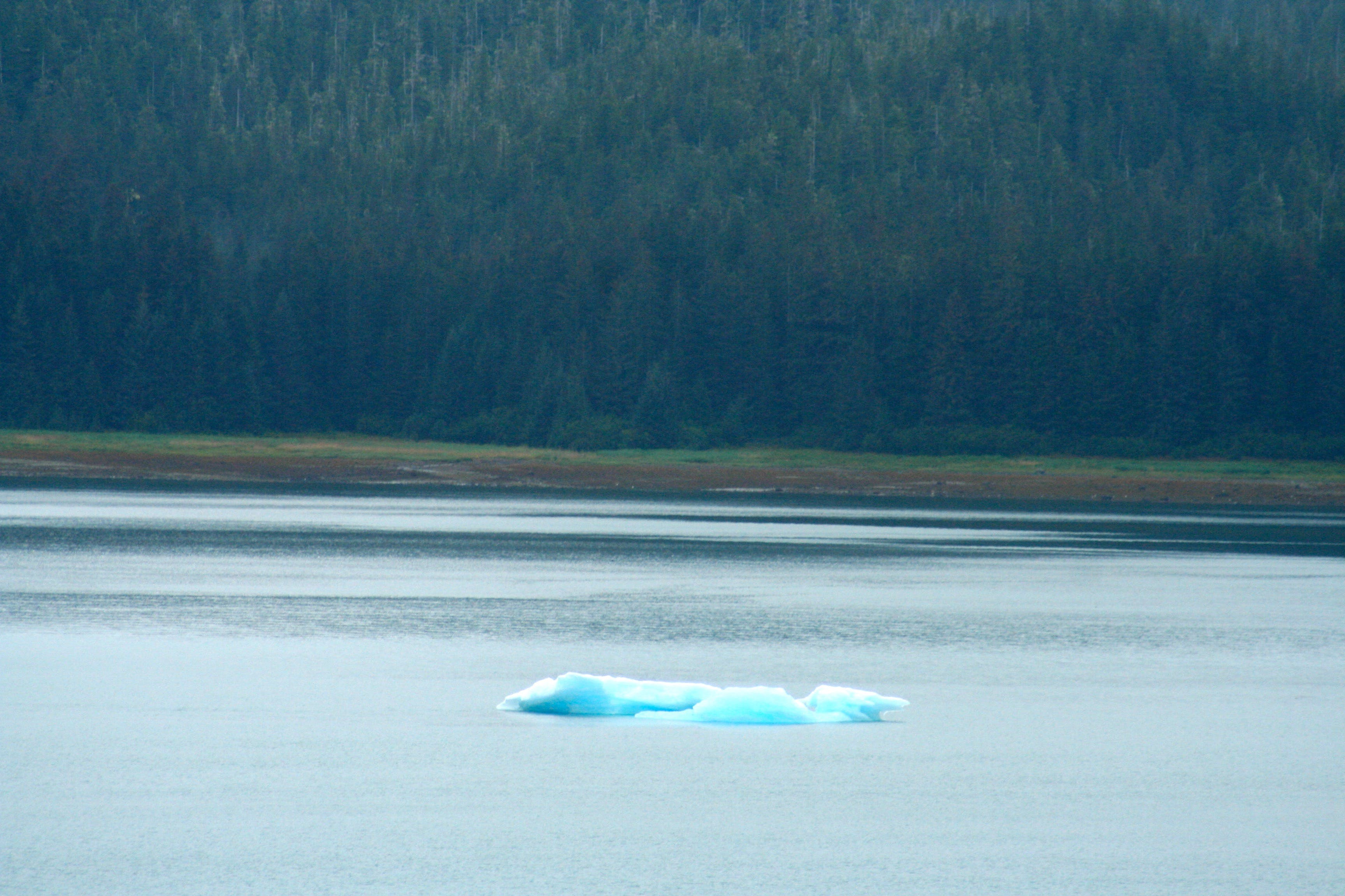 Free stock photo of alaska, blue ice