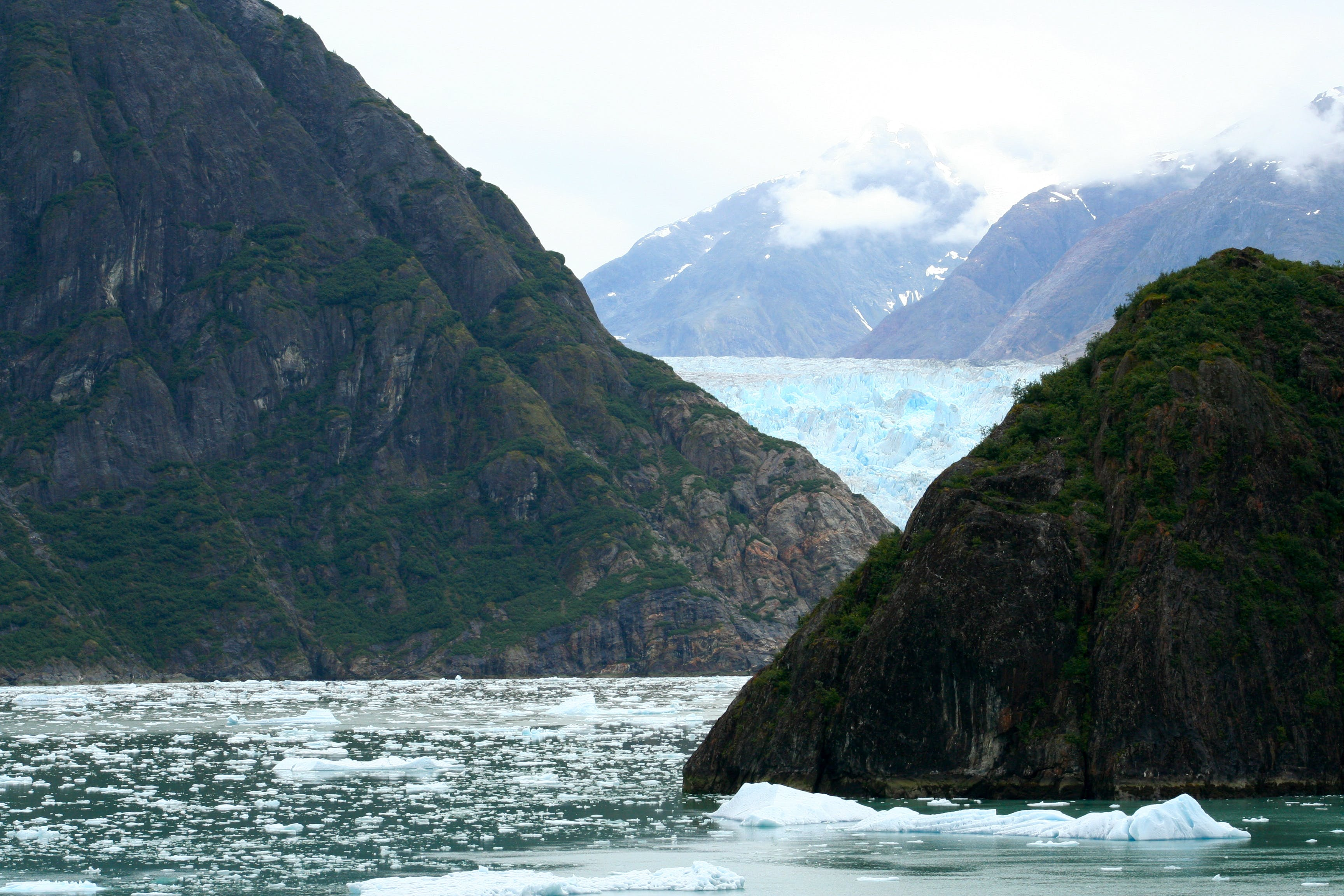 Free stock photo of alaska, glacier