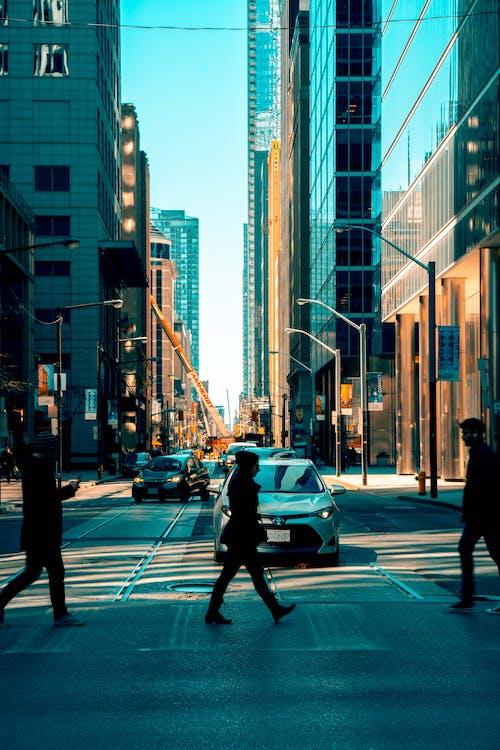 các tòa nhà, cao, hệ thống giao thông