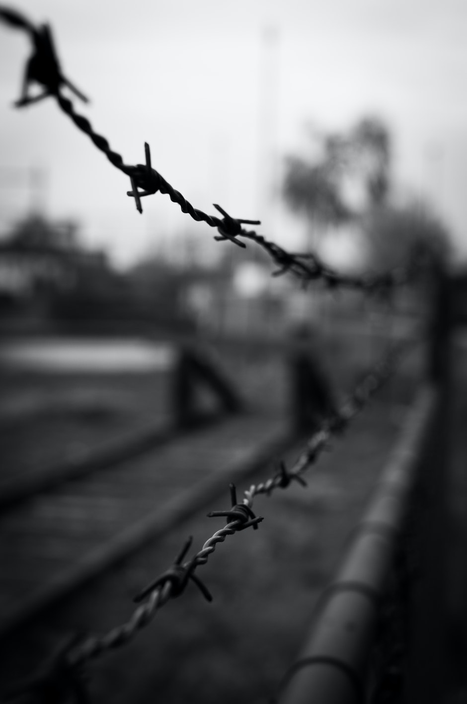 barbed wire, black-and-white, crime