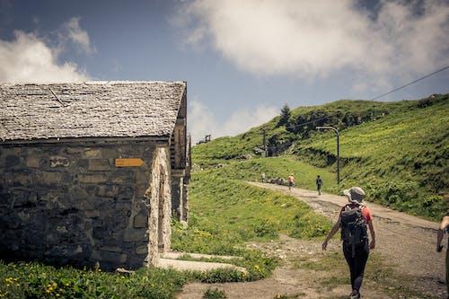 경치, 스위스, 해안 산의 무료 스톡 사진