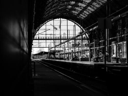 건축, 검정색과 흰색, 기차, 기차역의 무료 스톡 사진