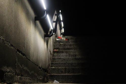 Foto d'estoc gratuïta de brossa, carrer, ecosistema, llums de la ciutat