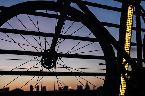Foto d'estoc gratuïta de alba, silueta urbana