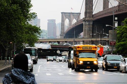 Foto d'estoc gratuïta de autobús escolar, pont de Brooklyn