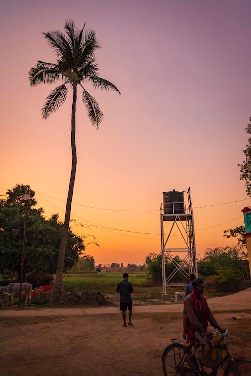 Foto stok gratis asal, daerah pedesaan, Desa, kehidupan desa