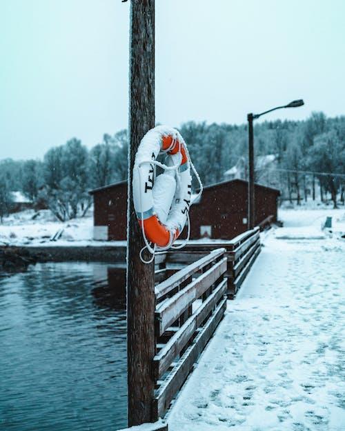 Foto profissional grátis de água, boia salva-vidas, cais, doca