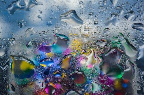 물, 유리, 젖은의 무료 스톡 사진