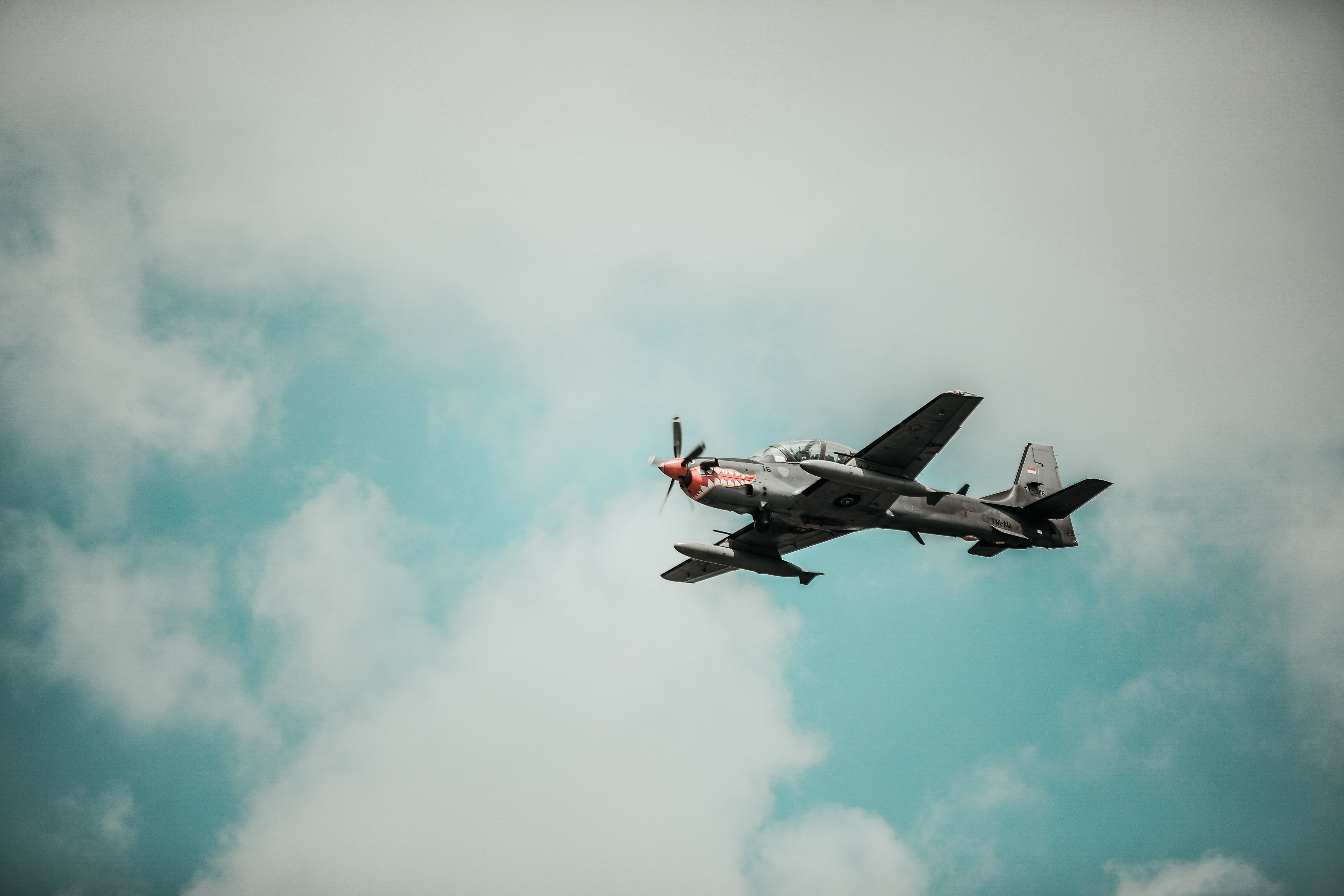 Plane On Sky