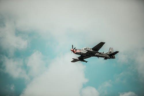 Darmowe zdjęcie z galerii z latanie, lot, lotnictwo, militarny