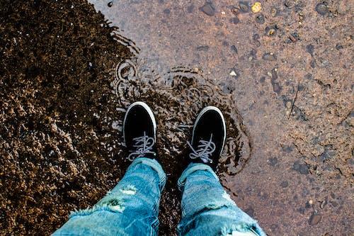 Foto d'estoc gratuïta de Aigües tranquil·les, bassal, calçat esportiu, caminant