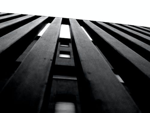 Foto stok gratis Desain, gelap, hitam & putih