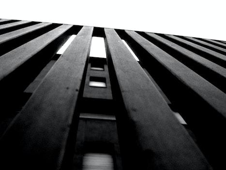 Free stock photo of black-and-white, dark, design, black and white