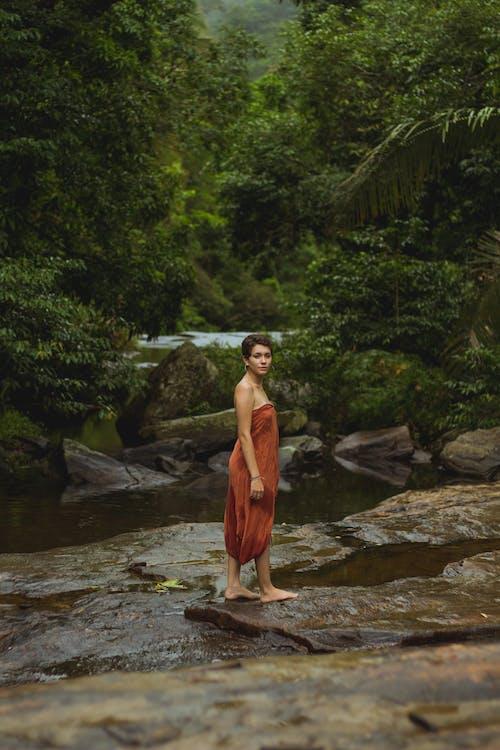 Ilmainen kuvapankkikuva tunnisteilla henkilö, kivet, naine, puut