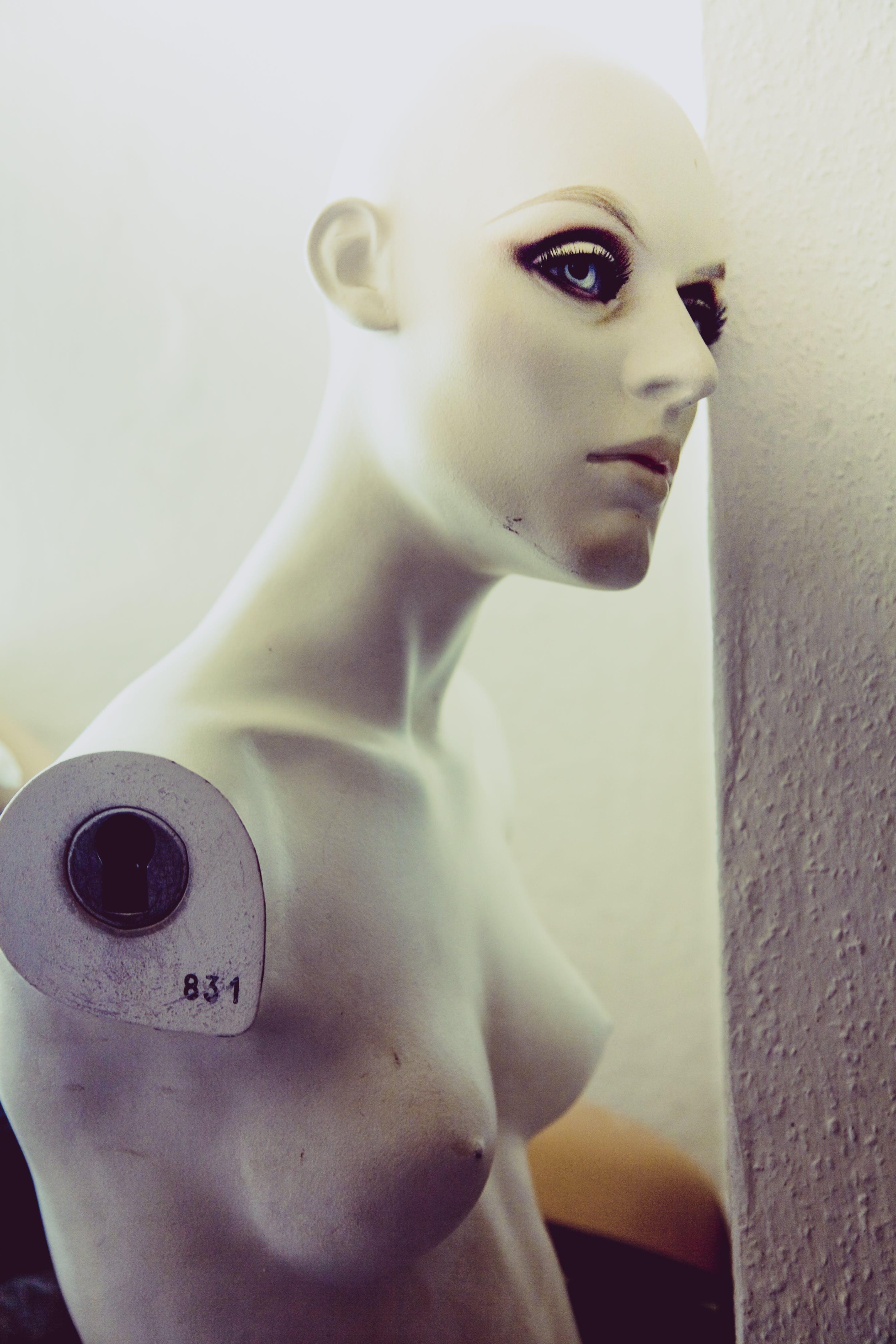 Fotos de stock gratuitas de blanco, hembra, maniquí, sin brazo