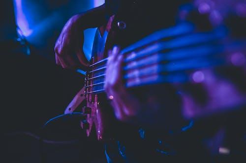 Darmowe zdjęcie z galerii z głębia pola, instrument muzyczny, instrument strunowy