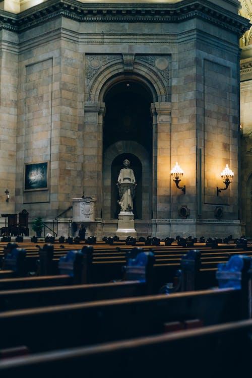 Foto d'estoc gratuïta de arquitectura, cadires, catedral, edifici